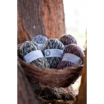 West Yorkshire Spinners Signature 4 Ply - Country Birds Collection